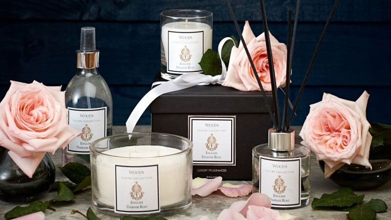 It makes scents! Explore the Woods Fragrance Collection