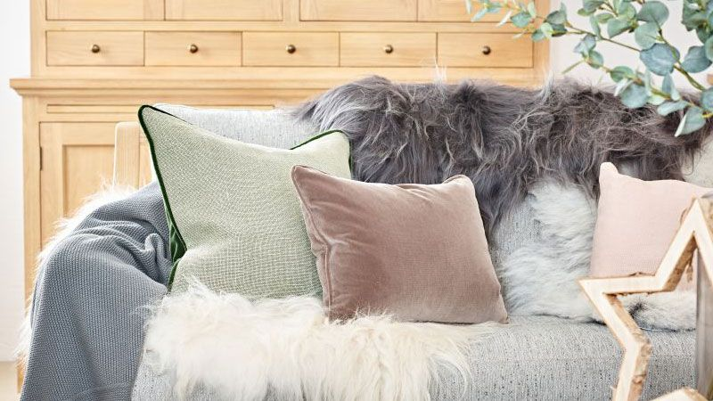 Sheepskin Throw For Sofa: Free Shipping - Buy Online UK Pric