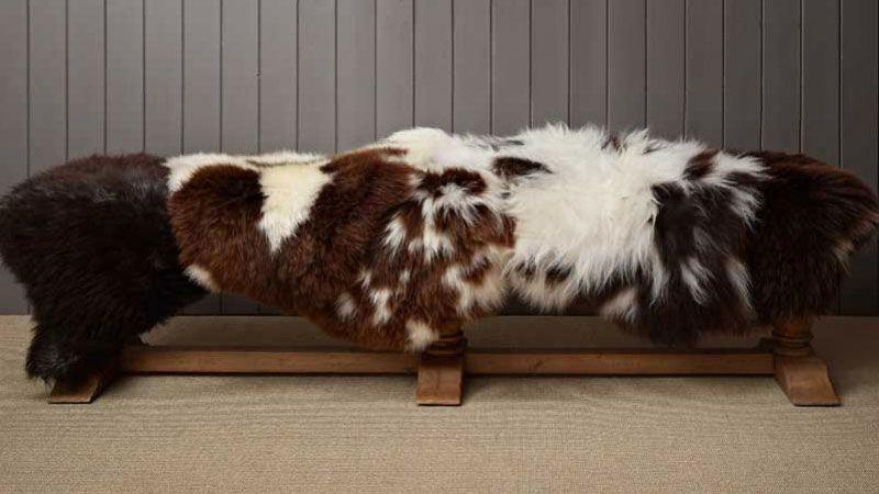 rare breed sheepskin rug buy british rare breed online in. Black Bedroom Furniture Sets. Home Design Ideas